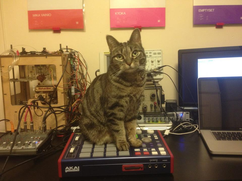 Cat lover hookup video bobby vinton