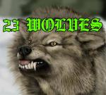 23 Wolves's image